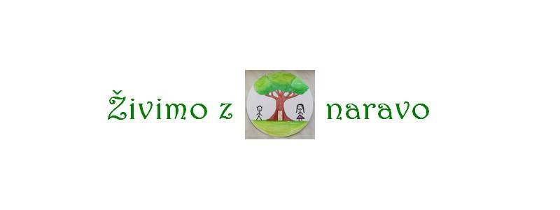 logo_simona2